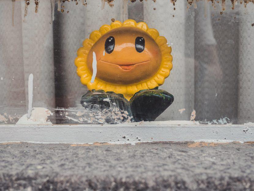 Uśmiechnięty słonecznik