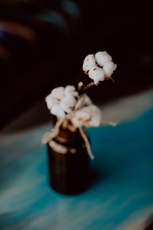 Detale kwiat