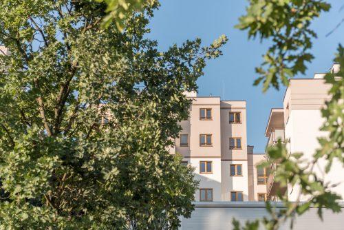 Zdjęcie bloków przez drzewa