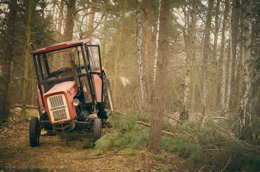 Ciągnik Ursus w lesie