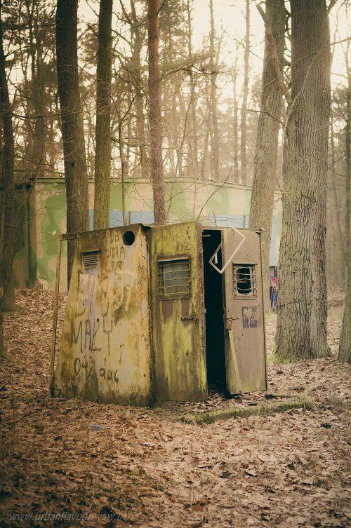 blaszana komórka w lesie