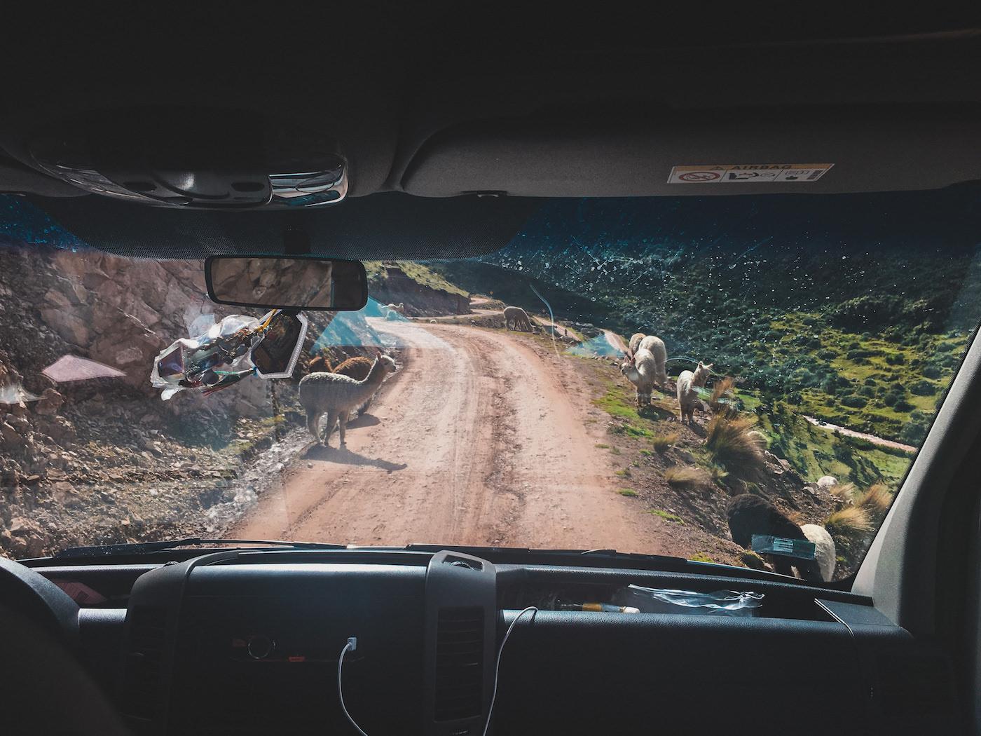 Lamy przy drodze