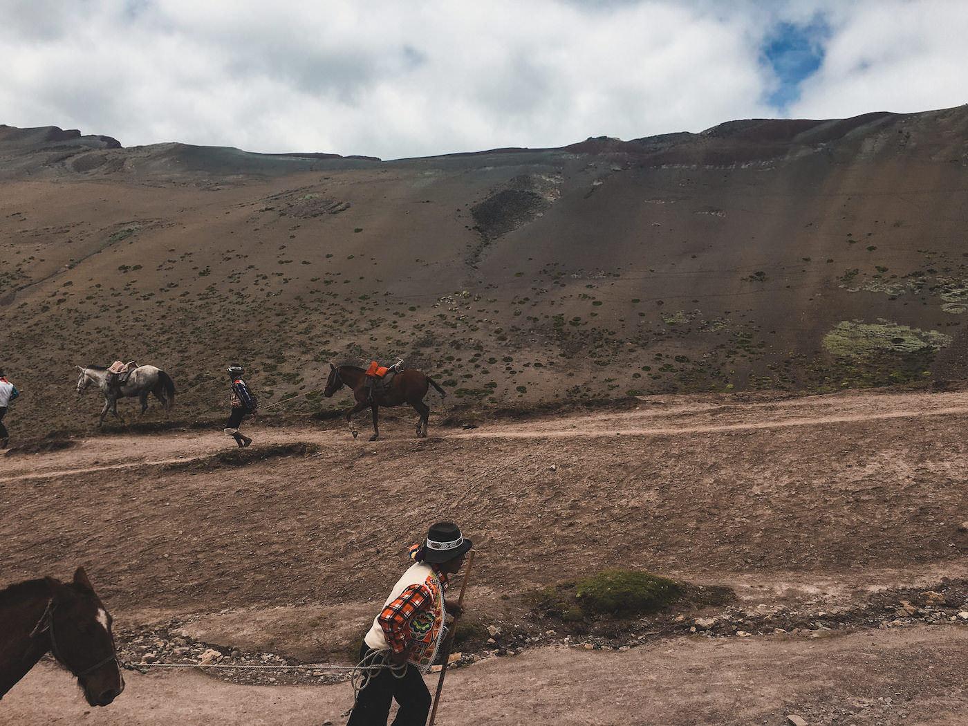 Mężczyżni prowadzący konie na tęczową górę