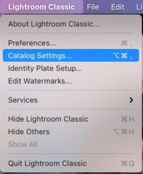 Ustawienia katalogu Lightroom
